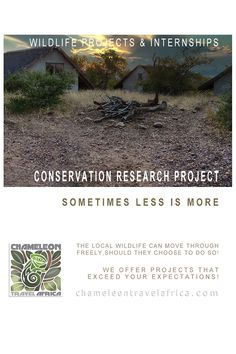 Conservation Research Project Reality Of Life, Research Projects, Less Is More, Volunteers, Studying, The Locals, Conservation, Habitats
