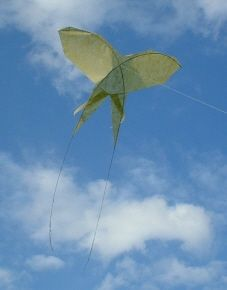 A unique Butterfly (?) kite made from paper and thin strips of bamboo. Not the most colorful kite out there, but it has an interesting outline and appears very air-worthy! T.P. (my-best-kite.com)