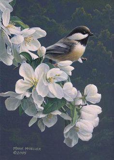 """""""Crabapple Chickadee"""" Chickadee painting by Mark Mueller"""