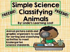 Need some cards and graphic organizers to use when teaching your kinders about classifying animals? Use this freebie!! You'll love it!!