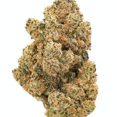 Marijuana Flowers UK | Buy Marijuana Flowers Online at Amsterdam weed Cannabis Growing, Cannabis Plant, Cannabis Oil, Buy Cannabis Online, Buy Weed Online, Vape Pen For Sale, Weed Seeds, Smoking Weed, Flowers Uk