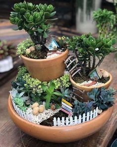 Source by homedecorhdid Miniature gardens 301952350018652401 - Interesting Fairy Garden Design Ideas. If you are looking for Fairy Garden Design Ideas, You come to the right place. Below are the Fairy Garden … Fairy Garden Pots, Indoor Fairy Gardens, Dish Garden, Fairy Garden Houses, Garden Trees, Miniature Fairy Gardens, Mini Cactus Garden, Miniature Fairies, Zen Gardens
