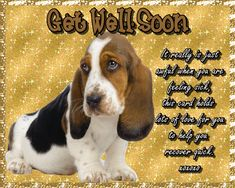 Cute beagle card to wish someone well. Free online Beagle Get Well Wishes ecards on Everyday Cards Get Well Soon Funny, Get Well Soon Quotes, Morning Hugs, Morning Wish, Get Well Wishes, Wishes For You, Healing Wish, Get Well Cards, Godly Woman