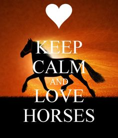 KEEP CALM AND LOVE HORSES. Another original poster design created with the Keep Calm-o-matic. Buy this design or create your own original Keep Calm design now. Horse Quotes, Animal Quotes, Horse Sayings, All The Pretty Horses, Beautiful Horses, Horse Background, Horse Wallpaper, Equestrian Quotes, Country Girl Quotes