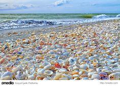 Sanibel Adası, Florida