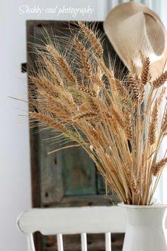 Shabby soul: Finally ..harvest wheat...