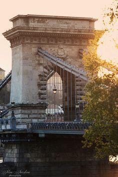 Chain Bridge (photo by: Elena Jursina) Places To Travel, Places To Go, Liberty Bridge, Hungary Travel, Central Europe, Budapest Hungary, Architecture Photo, Prague, Vienna