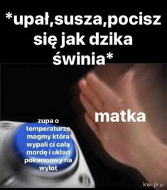 Funny Images, Funny Pictures, Funny Lyrics, Polish Memes, Weekend Humor, Nyan Cat, Everything And Nothing, Can't Stop Laughing, I Cant Even