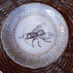 Fly #1   illustration on fine china plate.  Kelly Kielsmeier