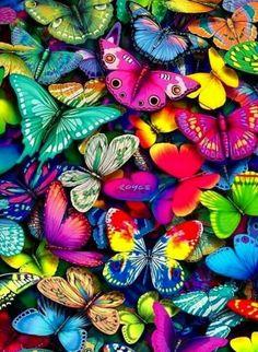 vivo en un mundo de mariposas....colorful butterflies and moths....