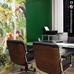 #Repost @studionoblesavage. ・・・ Adesivo com arte de Simone Monteiro, para Consultório Odontológico para amantes da natureza!  Dental doctors office for nature lovers! Projeto @studionoblesavage @mimismonteiro
