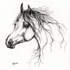 Arabian Horse Drawing 37 by Angel Tarantella