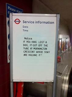 Where do dogs go when they get lost on the Tube?