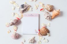 Notes I Styled Stock - Business Single Image, Sea Shells, Place Card Holders, Notes, My Style, Business, Floral, Artist, Beautiful