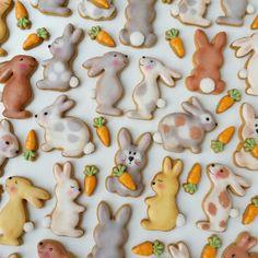 Bunny party!!   Cutters are now available in our Etsy shop!