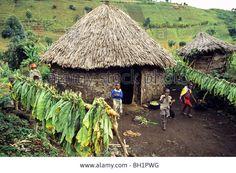 http://c8.alamy.com/comp/BH1PWG/african-village-djombe-virunga-mountains-zaire-africa-BH1PWG.jpg