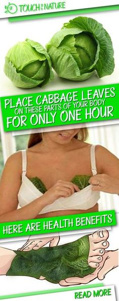 Cabbage leaves operate like a magnet for many diseases in the body. This vegetable is very helpful for treating specific conditions such as thyroid gland problems, headaches and othAw thanks hun. Yes see you later lovely. xxer.
