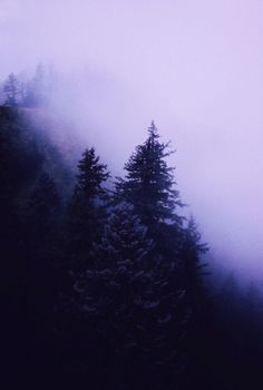 escape alone to an imaginary life