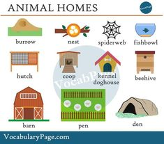 animal homes, #englishvocabulary