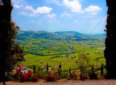 From Trabucchi Vine Yard. Illasi
