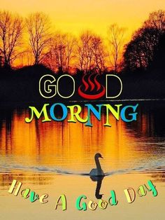 good morning images hd good morning images with quotes good morning images for whatsapp in hindi good morning images with flowers hd good morning images with rose flowers very good morning images good morning images in hindi good morning images hd Good Morning Posters, Very Good Morning Images, Morning Images In Hindi, Photos Of Good Night, Good Morning Picture, Good Morning Good Night, Morning Pictures, Gd Morning, Morning Pics