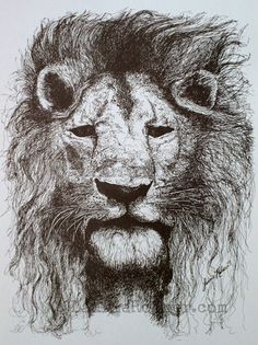 Ink Illustration Print Detailed Drawing Lion by BetweenTheWeeds..