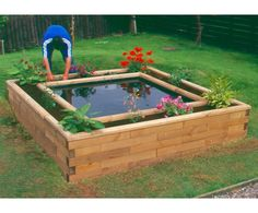 Turtle pond + raised bed to grow turtle food = perfect combo!