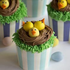 These EASY Easter chick cupcakes are so fun to make and totally delicious! The cupcakes themselves are moist vanilla with a hit of lemon and delicious! Chocolate Nests, Chocolate Chip Cookie Bars, German Chocolate, Chocolate Dipped, Chocolate Cake, Moist Vanilla Cupcakes, Strawberry Buttercream, Buttercream Flowers, Italian Buttercream