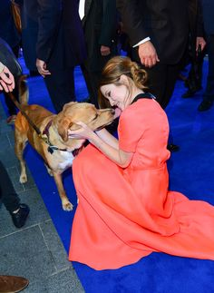 "And kissing leading lady Emily Browning. | Tom Hardy Took His Dog To The ""Legend"" Premiere And It Was Adorable"