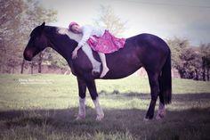 sleepy horse | Sleeping on a Horse - Olivia Bell Photography