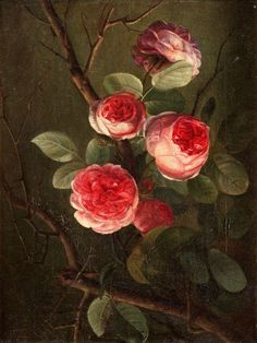 """"""" Cornelis van Spaendonck (Dutch, 1756 - In 1789 He became a member of the Académie des Beaux Arts. He painted throughout his lifetime, displaying his works in the salons of Paris until Still-life with Roses With love 🕊️ 💫 Art Floral, Botanical Illustration, Botanical Prints, Illustration Art, Images D'art, Jean Arp, Raindrops And Roses, Alberto Giacometti, Oeuvre D'art"""