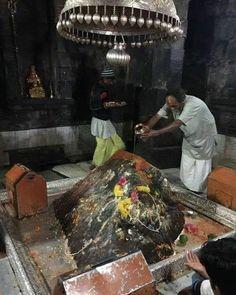 Lord Shiva after Kedarnath. Kali Shiva, Shiva Yoga, Shiva Shakti, Lord Krishna, Rudra Shiva, Travel Photographie, Lord Shiva Hd Wallpaper, Ganesh Wallpaper, Lord Balaji