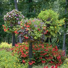 Raised Baskets    Flowers don't have to grow at ground level. Get face-to-face with your containers by literally putting them up on a pedestal! These columned containers consist of coco-fiber baskets atop steel posts.