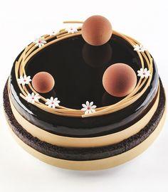 87 Best Shiny Cakes Mirror Glaze Images Mirror Glaze