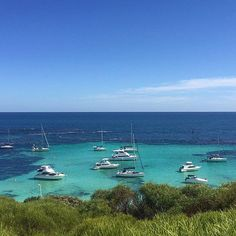 Rottnest island Perth! No filter needed! Defo a tick off the bucket list! One of the best places I've been in Australia!  #rottnestisland #Perth #Australia #WA #beach #sea #boats #beautiful #rottnest #rottnestexpress #quokkacentral #layover #crew #crewlife by lipstick_carts_and_cocktails http://ift.tt/1L5GqLp