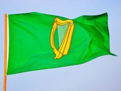 Bandeira de Leinster