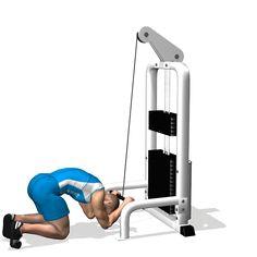 CRUNCH KABEL ZAANGAŻOWANA mięśniach podczas brzucha TRAINING