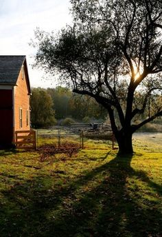 There is this over-romanticized part of me that deeply desires to live on a farm. Like this.