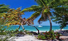 Die 10 schönsten State Parks auf den Florida Keys & Key West