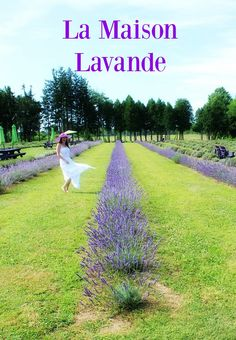 La Maison Lavande only 35 minutes north of Montreal. Check out the blog for best times to go !