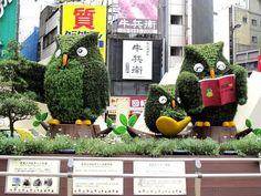 Wanderlust Wednesday: Tokyo, Japan