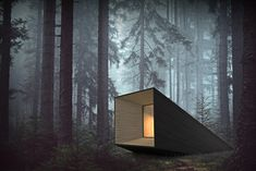 The Silence Amplifier is a forest cabin that is able to augment the impressions of nature, allowing guests to meditate in a natural, yet sheltered environment. The goal of the design serves two purposes: on the one hand, the cabin shall enhance the guest's ability to meditate in a living environment.