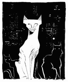 mckean_cat.jpg (293×352)