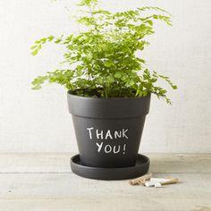 Chalkboard Planter - 20 cm.