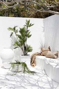 Uniqwa furniture collection's delightful range of large white outdoor pot's and . Outdoor Spaces, Outdoor Living, Outdoor Decor, Outdoor Pots, Exterior Design, Interior And Exterior, Beton Design, Deck Lighting, Interior Decorating