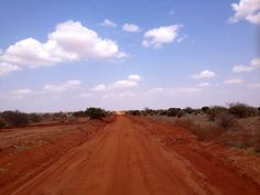 Terra d'Africa in un fantastico safari con Focus Vacanze Incoming