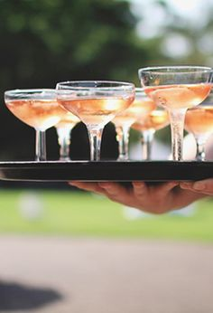 champagne coupes.