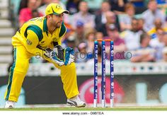 London, UK. 17th June, 2013. Australia's Matthew Wade (wk) during the ICC Champions Trophy international cricket match between Sri Lanka and Australia at The Oval Cricket Ground on June 17, 2013 in London, England. (Photo by Mitchell Gunn/ESPA/Alamy Live News) - Stock Image