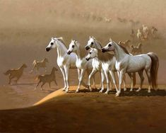 Arabians Standing on a Sand Dune. (by Hocine Ziani).
