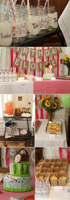 picnic-first-birthday-party